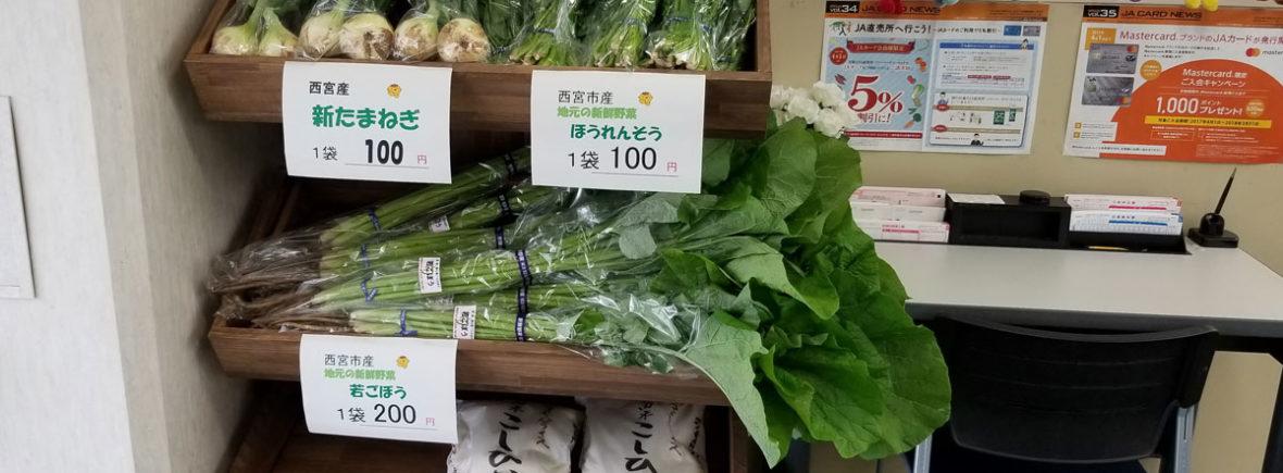 JA甲東 ロビーの野菜棚