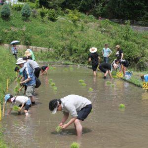 "<span class=""title"">米作り体験は2018年度で終了しています。</span>"