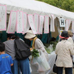 フラワーフェスティバルで人気の西宮産野菜市