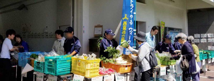 JA甲東 野菜の即売会