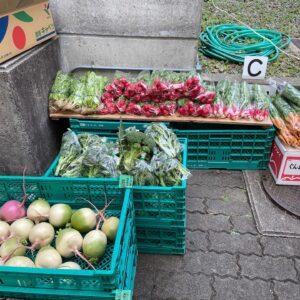 甲山マルシェで野菜の直売