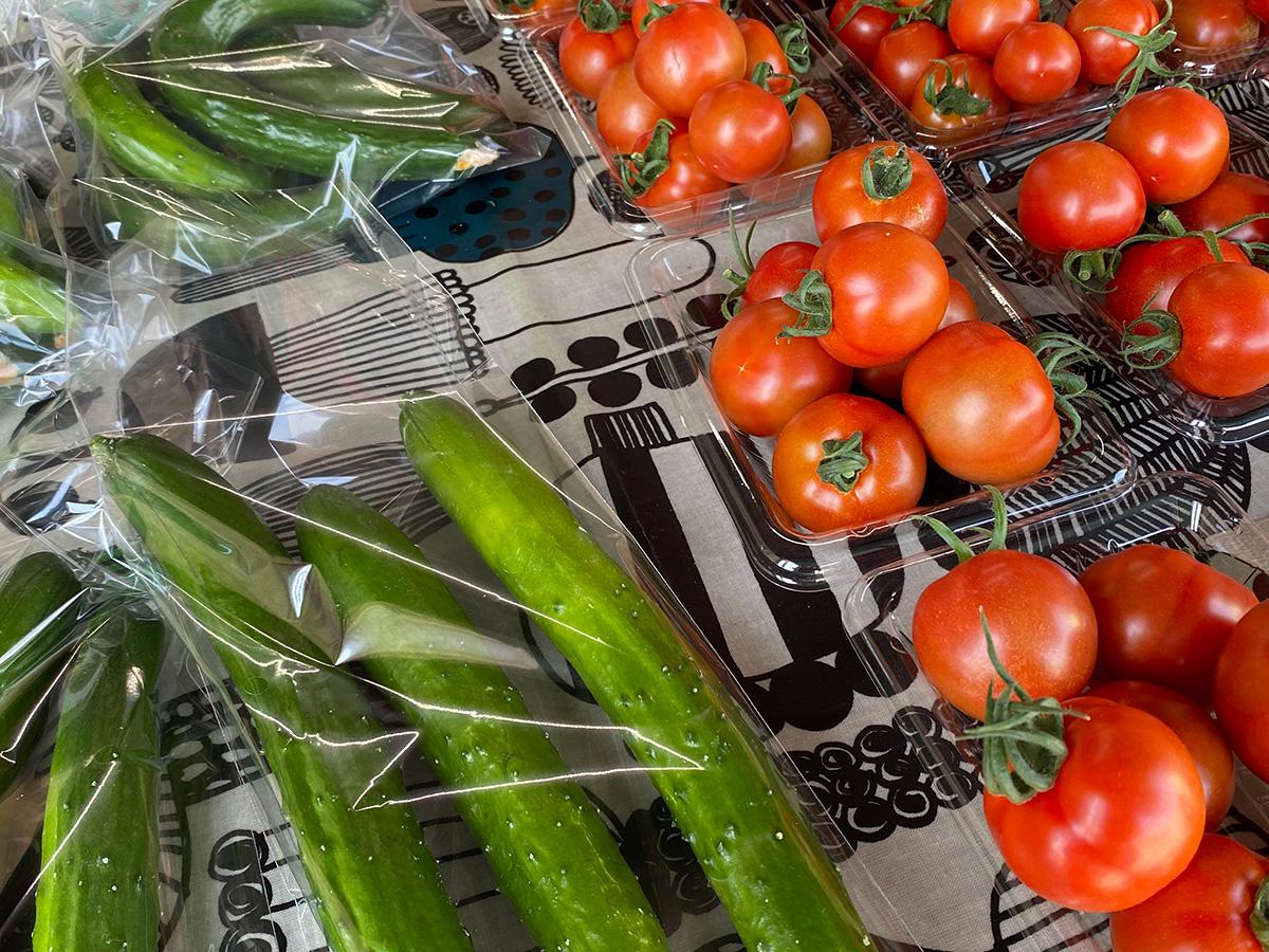 シューファームのきゅうりとトマト